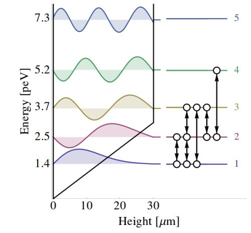 Los niveles de energía, con la representación de sus funciones de onda y las posible transiciones entre niveles.