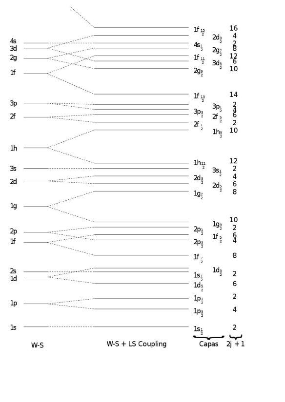 El Núcleo Atómico Y Sus Modelos Cuentos Cuánticos