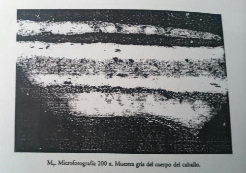 Estratigrafía7