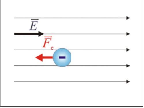 electricohomogeneo