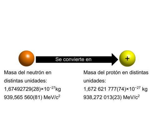 neutronaproton