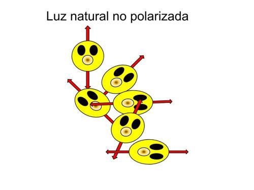 nopolarizada