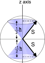 Quantum_projection_of_S_onto_z_for_spin_half_particles