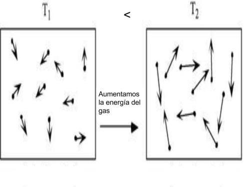 La distribución en direcciones y sentidos de las velocidades de las moléculas de un gas siempre es aleatoria.  Sin embargo, el promedio del módulo de la velocidad aumenta o disminuye con los aumentos o disminuciones de la temperatura del gas.